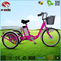 Hot sale 3 wheel electric bike big wheel tricycle for cargo