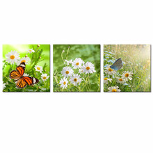 Multi Pieces Wall Art Wholesale Daisy Floral Canvas Artwork Butterfly and Flower Oil Painting