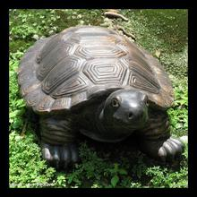high quality sea turtle statue
