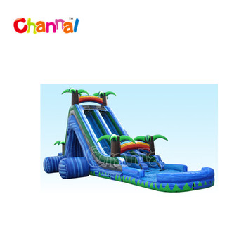 dual lane inflatable water slide, giant inflatable water slide for sale
