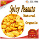 Wholesale free samples reliable quality spicy flavour coated peanuts