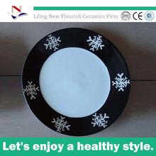 insulated dinner plates