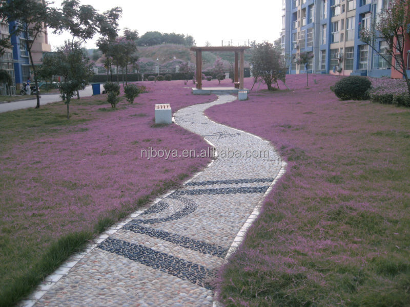 garden walkways decorative natural river pebble stone for sale