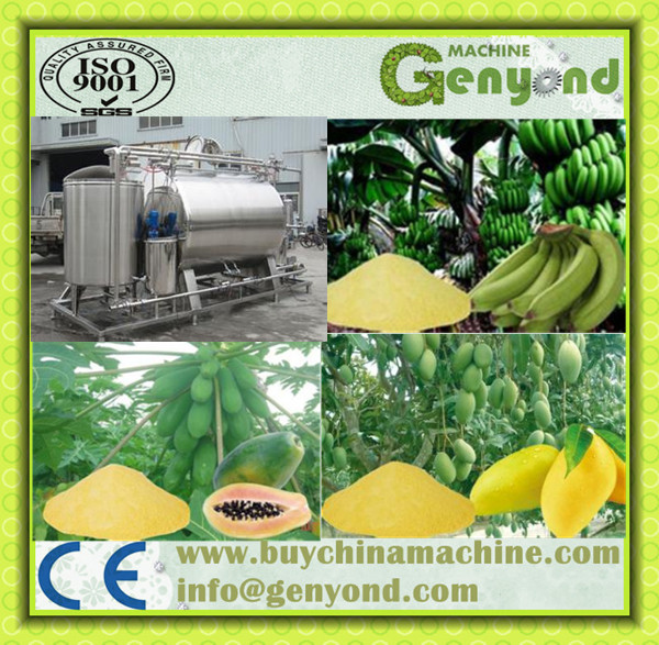 Dried Fruit Chips Processing Machine / Fruit Chips Production Machine Line for Apple/ Orange/ Melon Mango
