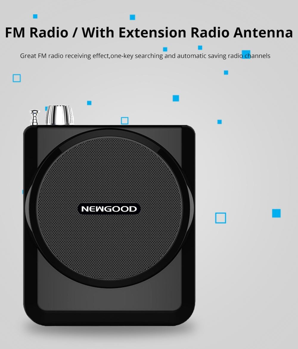 Wired FM Wireless Portable Voice Amplifier high power portable design wireless mini <strong>speaker</strong>