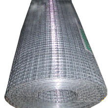 galvanized welded wire mesh/low price welded wire mesh