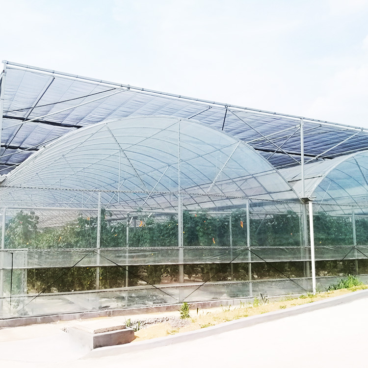 Vegetable Tunnel Poly Film Low Cost Greenhouse For Sale