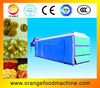 Mesh Belt Dryer For Vegetable And Fruit