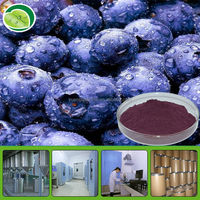 Professional GMP Factory Supply Acai Berry Juice Powder - 100% water soluble