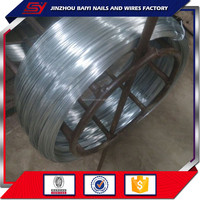 Electric galvanized iron wire/BWG21 China