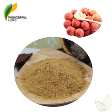 Natural organic Litchi fruit juice flavor seed powder lychee seed extract