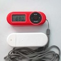 Cheap Portable mini FM radio with earphone