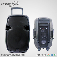 Wholesale 100W Powerful Active Stage Speaker 12inch Trolley Amplifier Professional Bluetooth Audio Speaker