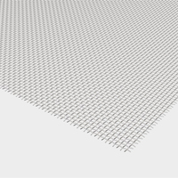 Black powder coated stainless steel Ss304 wire mesh used for security window and door screens from factory supplier