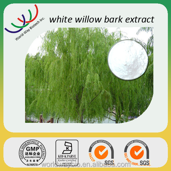 White willow bark free sample Chinese herb medicine KOSHER certified anti-rheumatism white willow bark extract 98% salicin