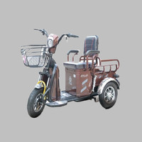 2018 China popular new product city road for parents three wheel 48V 500W electric tricycle