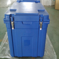 2013 plastic thermal insulated box