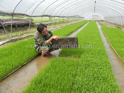 High quality plastic rice seedling tray