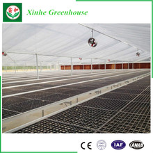 Best Selling Film Greenhouse for farming/seeding