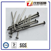 Common Nail Iron Nail Factory /Iron Wire Nails / Common Nails