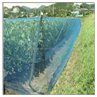 New design insect hat net for wholesales