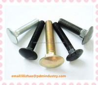 cup head square neck carriage bolt DIN603 M10*30 carbon steel in China from PDM