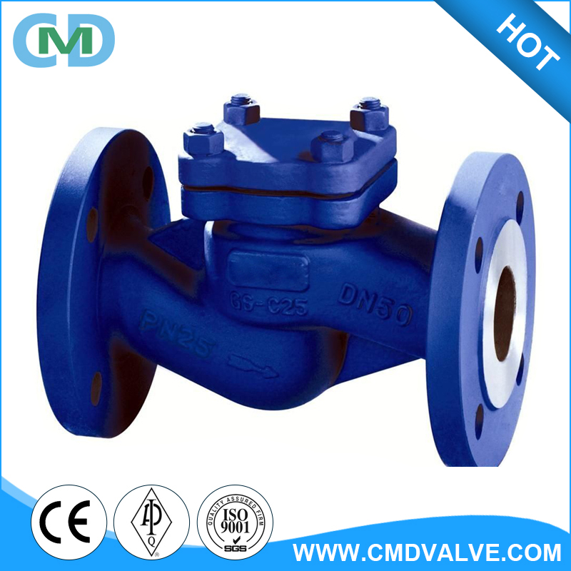 Flanged DIN DN50 DN100 PN25 Spring Loaded Cast Globe Check Valve