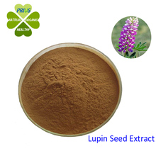 plant extract Top Quality Lupin seed Extract 4:1 5:1 10:1 20:1