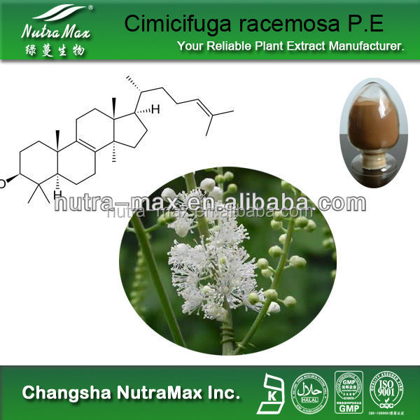 100% Natural Black Cohosh Extract Triterpenes,Cimicifuga Racemosa Extract