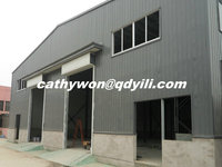 Professional steel structure house made in China