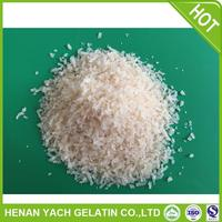 Professional gelatin halal for wholesales