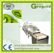 dehydrated fruit slices produce line / dried kiwi slices produce line