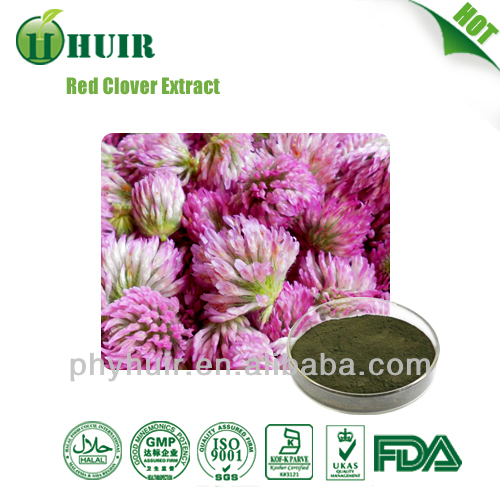 Lowest Price red clover p.e