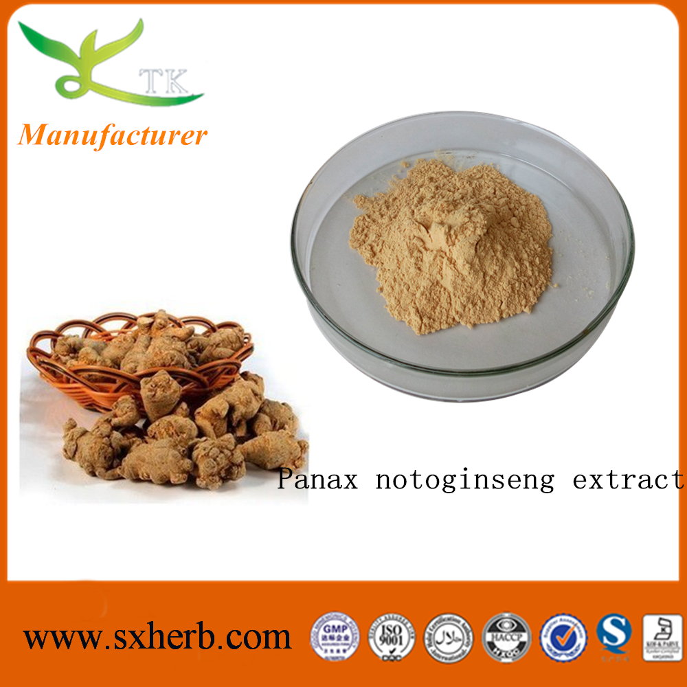 Notoginseng extract powder sanqi extract