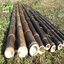 ZY-1006 Chinese Factory Price Nigra Bamboo Poles Black Bamboo