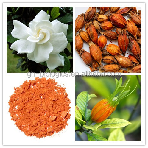 100% Pure Natural Fructus Gardeniae P.E. Gardenia Fruit Extract Powder