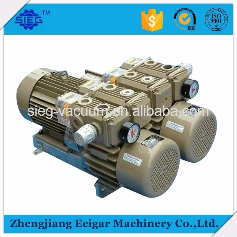 High Quality Dry Rotary Vane Vacuum and Pressure Pump on Sale