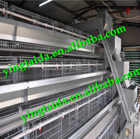 pvc coated or galvanized cages laying hens (ISO9001 factory)
