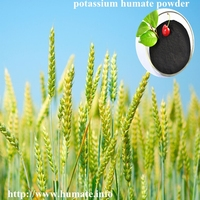 15Years High Quality Potassium Humate, Humic Acid, Humate Liquid Fertilizer