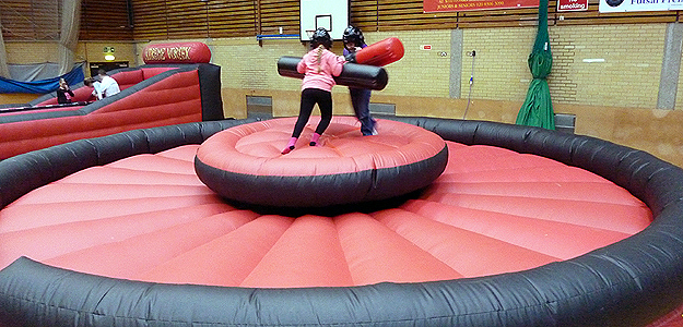 Last One Standing with Netted Walls/Inflatable Sport Game For Adults