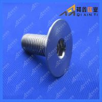Hot Sale Gr2 Titanium Bolt M5 for Car