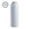 Aluminum aerosol spray can