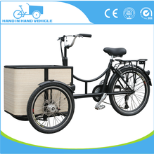 electric 3 wheel carriage bike for adult