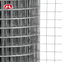 security iron 5x5 welded wire mesh