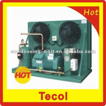 Bitzer air-cooled condensing unit for refrigeration cold storage