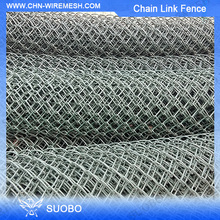 Dog Run Fence Panels/Pvc Coated Chain Link Fencing(Factory)