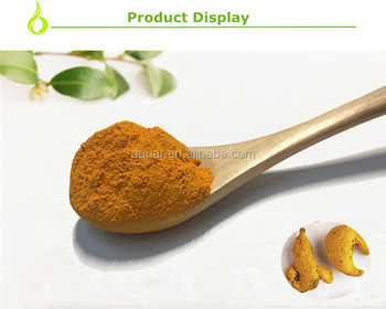 reliable supplier turmeric root extract curcumin 95% powder Curcumin Herb Turmeric Powder
