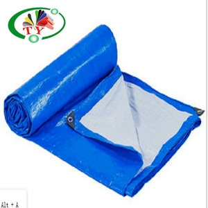 China PE Tarpaulin Size and Price List for Construction Covers