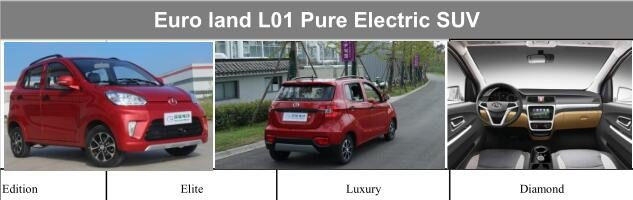 PURE ELECTRIC SUV