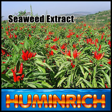 Huminrich Shenyang Water Soluble Seaweed Extract Organic Fertilizer Vegetable Garden